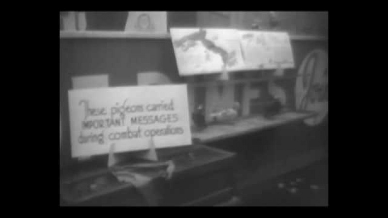 New Head Of Church Installed 1947 Newsreel  History Porn