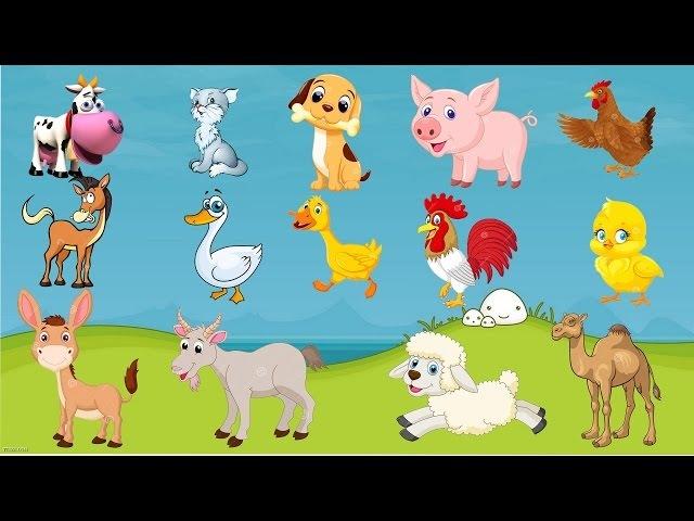 звуки животных на английском | звуки животных для детей | farm animal sounds | ozu kids channel