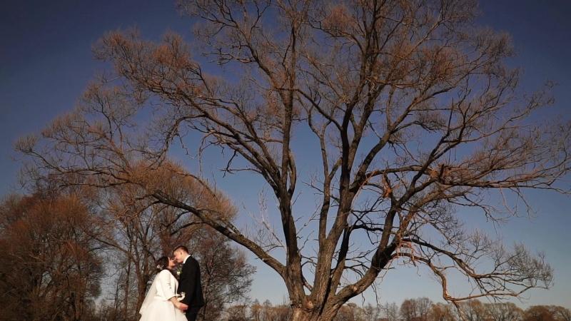 Ролик в день свадьбы на банкете у Татьяны и Владимира