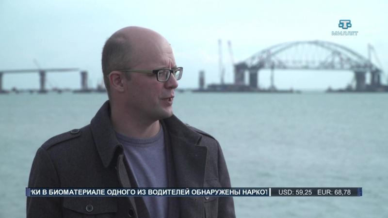 Ученые и экологи наблюдают за массовой миграцией дельфинов в Керченском проливе
