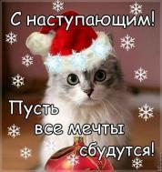 зима... с наступающим новым годом!