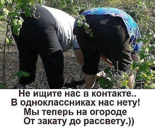 https://pp.userapi.com/c840025/v840025216/784e3/cTGUQ4QuTqY.jpg