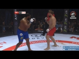 Тони Джонсон vs Виталий Минаков _ Tony Johnson vs Vitaly Minakov