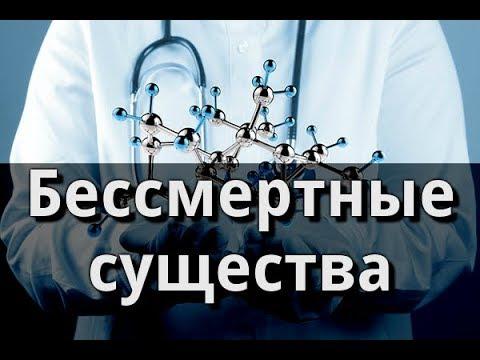 Бессмертные существа. Пётр Гаряев