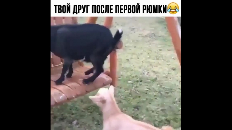 Videos_hype_BjU_eJ-AnmQ.mp4