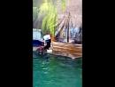 Дельфинария в г Чебоксары 17 03 2018 парк Амазония