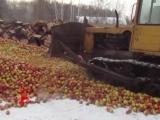 На челябинский рынок не пустили 18 тонн яблок и 19 тонн свиного шпика.