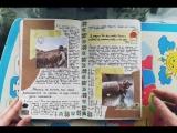 Sakura's Diary Kim. Part 2
