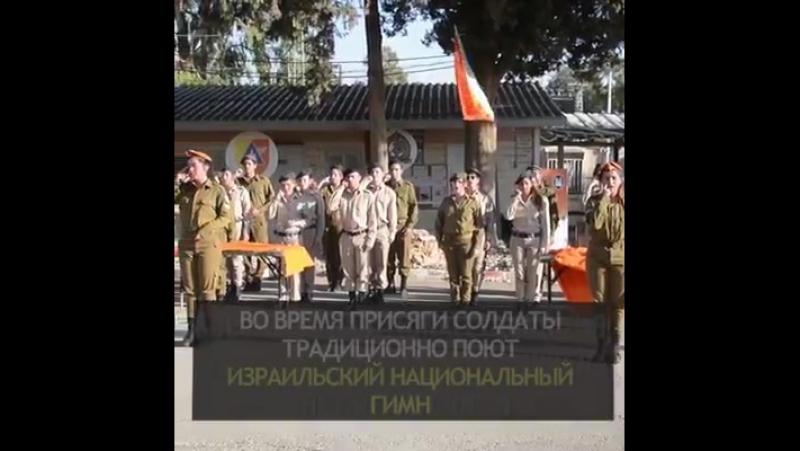 Очень трогательно ! Солдаты - добровольцы ЦАХАЛА исполняют гимн Израиля на языке жестов .