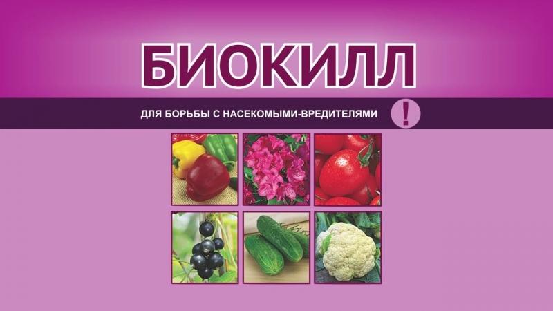 Биокилл — для борьбы с насекомыми-вредителями