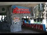 Приглашаем в Алуштинский Аквариум