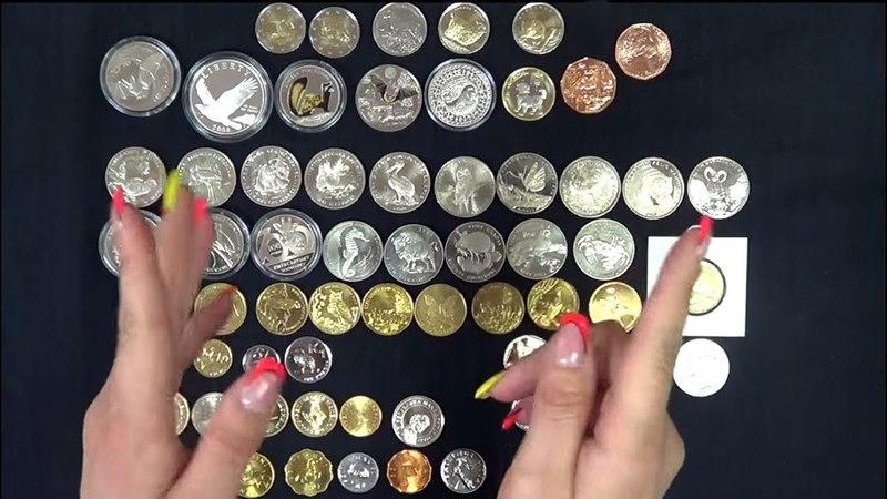 Монеты с насекомыми птицами африканскими житными и очковым медведем