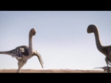 2. Planet Dinosaur - Feathered Dragons