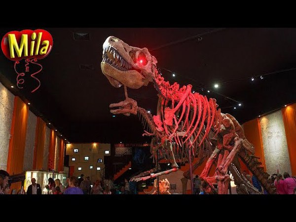 Веселая Детская Песня про Динозавров Everybody Walk the Dinosaur Саундтрек из Ледникового Периода 3
