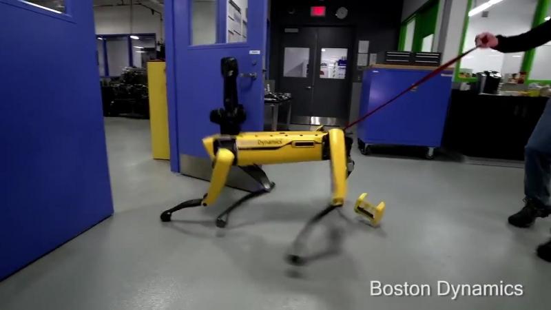 Робот собака Boston Dynamics оказала сопротивление человеку