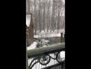 Зимняя сказка «В гостях у сказки» ❄️