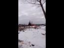 Море облепихи на улице Набережная в д Нижняя Кумашка