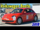 Задний краш тест 2018 Volkswagen Beetle
