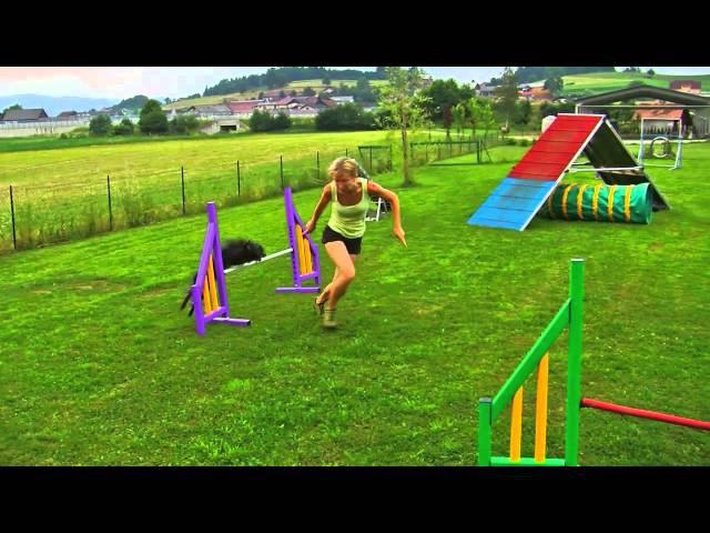 Le, agility training