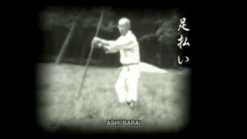 Мастер Ниндзюцу работа с Бо