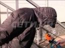 Наркоман-людоед задержан в Нижнем Новгороде