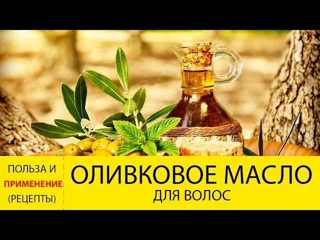 Оливковое масло для волос. Польза и ПРИМЕНЕНИЕ оливкового масла для волос