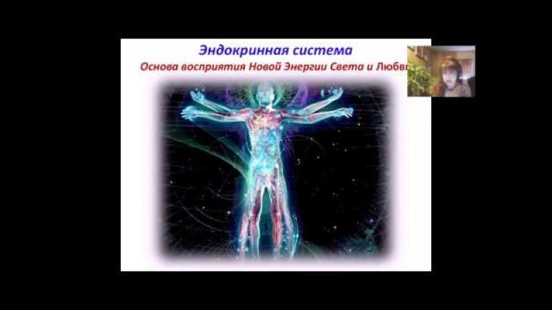 2 Запись 15 02 Почки Люсия Дашкевич