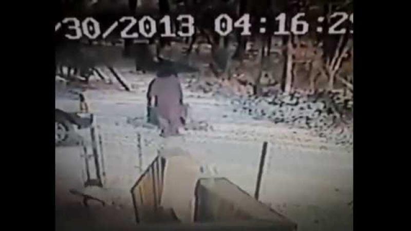 Woman Kicks Snow On Cat, Immediately Regrets It Funny