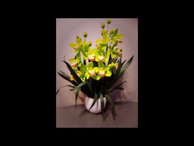 Мастер- класс орхидея Цимбидиум (1часть)