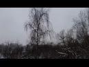 Сенсационный прогноз от 16 2 18 Скоро будет снег С 3