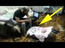 Отец ругал малыша, а то что сделал кот поразило всех