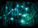 Вайтомо - Секретные Пещеры Светлячков В Новой Зеландии! Загадочные Места В Мире!