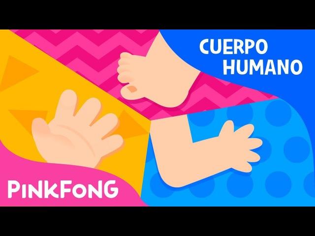 Nuestro Cuerpo | Cuerpo Humano | Pinkfong Canciones Infantiles