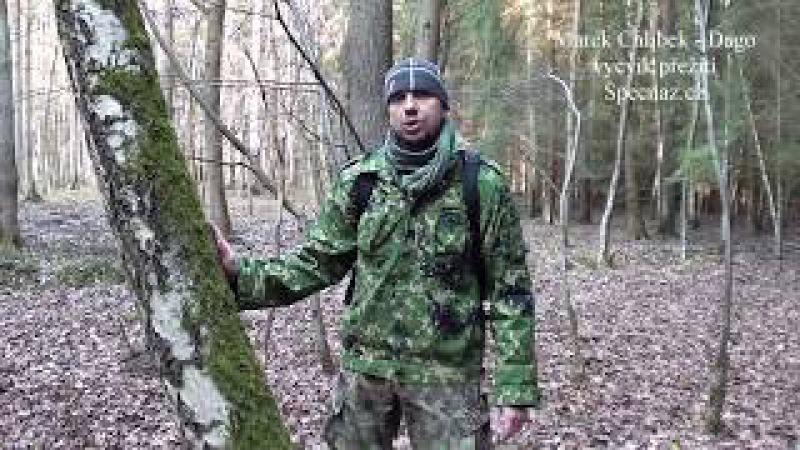 KDE JE SEVER? NEVĚŘTE VŠEMU V PŘÍRUČKÁCH PŘEŽITÍ /Specnaz.cz/