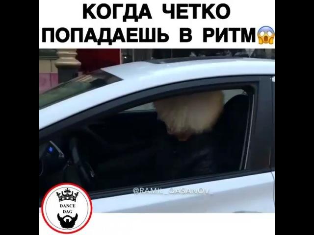 "Поиск Музыки❤️🌹😍 on Instagram: ""Танцуют все 😍😂"""