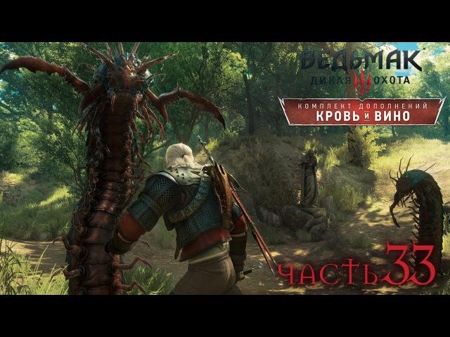 Кровь и вино🍷 На смерть💀 Билд на алхимика что выйдет The Witcher 3 Wild Hunt №32