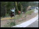 Tevis 2012: Renegade® Riders at Highway 89 Crossing