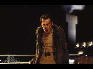Джоэл Коэн, Итан Коэн - Фарго / Fargo (1995) Фрэнсис МакДорманд, Уильям Х. Мэйси, Стив Бушеми, Петер Стормаре