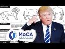 Дональд Трамп отличил льва от носорога - сравните себя с президентом США