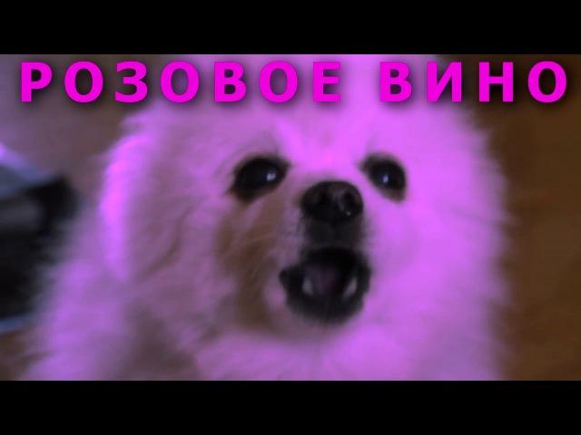 Элджей Feduk - Розовое вино (ft. Пёс Гейб)