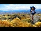 Wild (2014) Movie - Reese Witherspoon, Laura Dern
