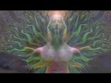 Самадхи. Часть 1. Майя, иллюзия обособленного Я