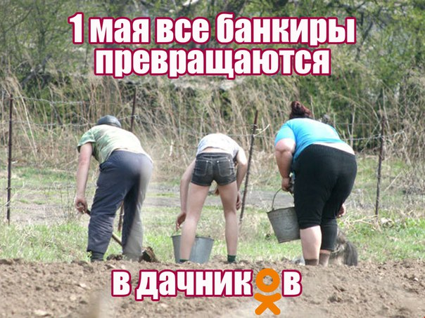 На огороде все равны — банкиры, вкладчики, те кто брал у банка кредит
