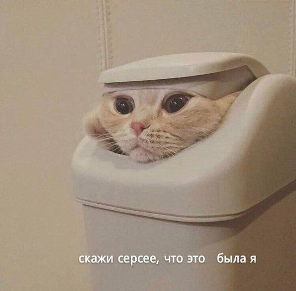 _m2TTIDVrO0.jpg