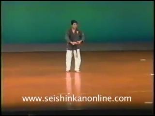 Yamashiro Sensei San Setsu Kon Kata Bunkai