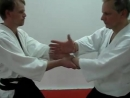 Aikido hand movements in IRIMINAGE and TENCHINAGE, by Stefan Stenudd