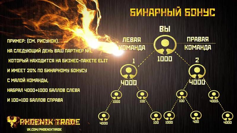 Маркетинг компании Phoenix Trade (русская версия)