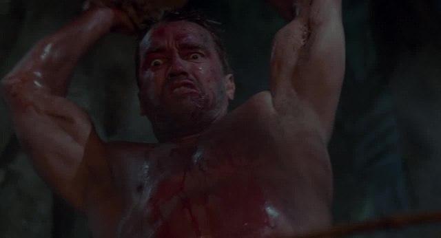 Beverly Hills Predator · coub, коуб