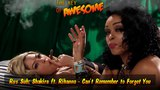 Rus Sub Shakira ft. Rihanna - Can't Remember to Forget You Parody! (The KOA #83)