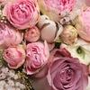 Цветы FLORIDA г.Челябинск